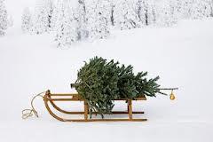 keukengeheim kerstboom