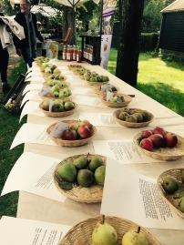 Appels Fryske Frucht